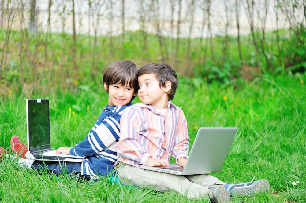 Two brothers in nature with laptops
